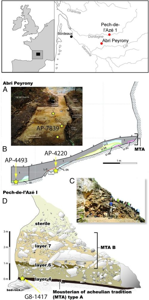 Map and stratigraphic sections of Abri Peyrony and Pech-de-l'Azé I. (A) View north of Abri Peyrony after 2010 excavation. (B) East section of Abri Peyrony with stars indicating the levels containing the reported bones. (C) View of the Pech I 3-m MTA section. (D) East section of Pech I with the star indicating the location (1 m from the drawn section) of the reported bone (more plans and photos in the SI Appendix). Only the MTA was discovered at both sites.